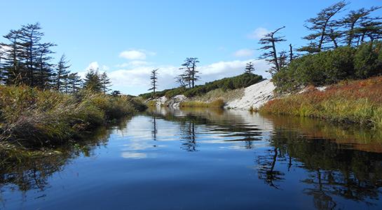 Отдых на севере Сахалина. Экологический тур (фототур).